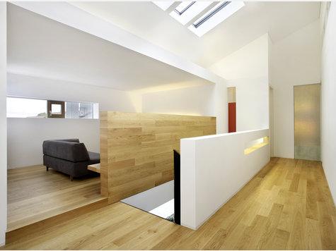 reparaturgewebe um gut sichtbare l cher in wand und decke auszubessern ausbau renovierung. Black Bedroom Furniture Sets. Home Design Ideas