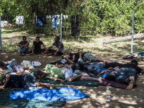 Nürtinger Zeitung: Austauschschüler aus Ungarn zu Gast
