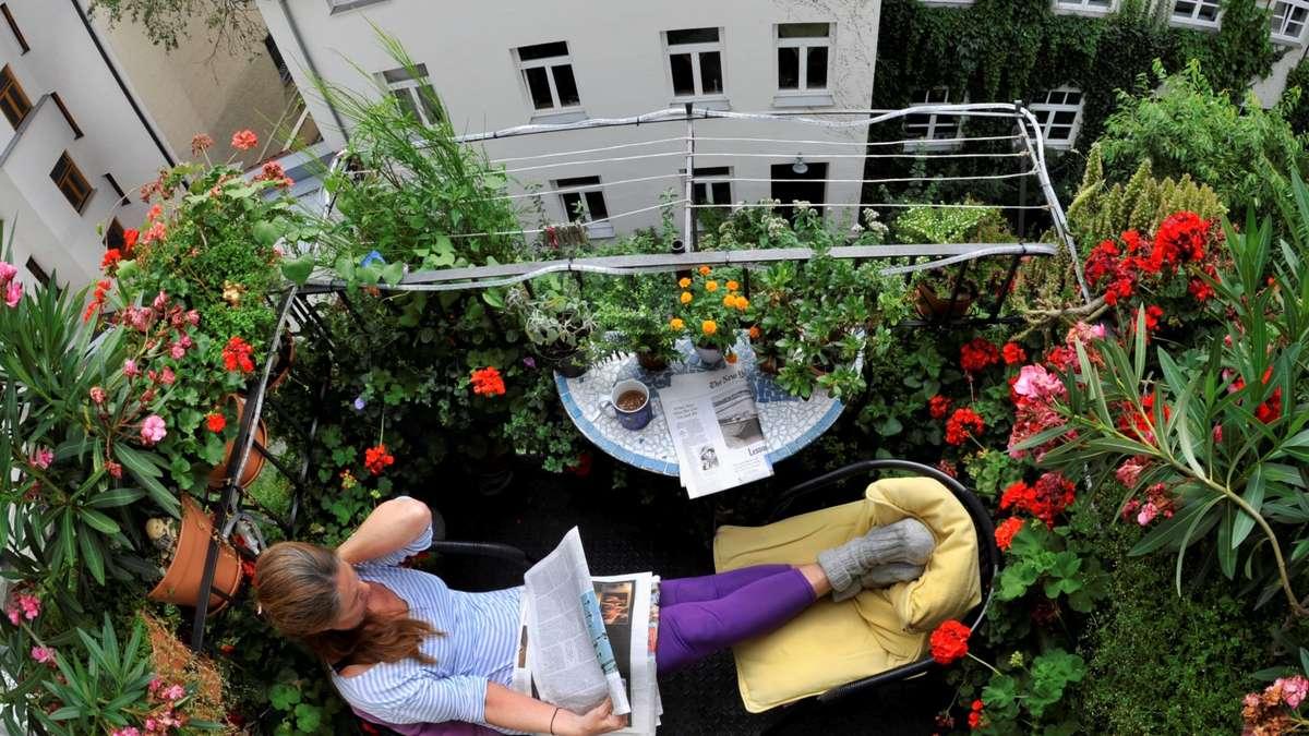 Kleiner Holzkohlegrill Für Balkon : So wird Ihr kleiner Balkon schön für den nächsten Sommer  Wohnen