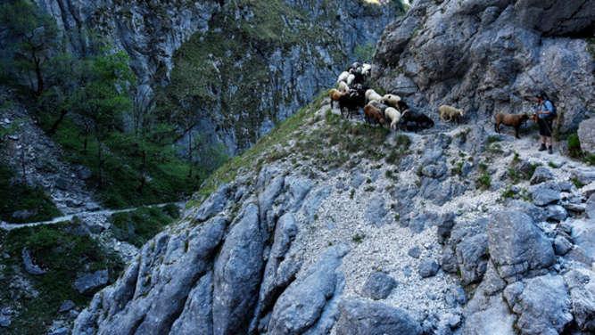 39-Jährige stürzt im Höllental 200 Meter tief in den Tod