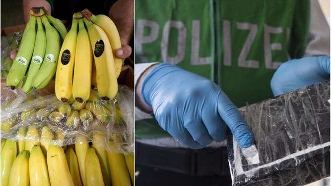 Knapp eine Tonne Koks: Bayerns Polizei mit Mega-Drogenfund