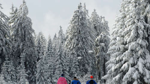 Wintersportevents im Chiemgau