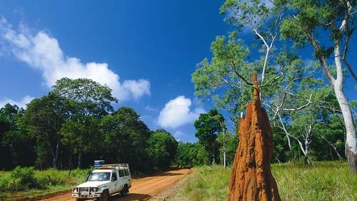 Australien: Safari durch Queensland