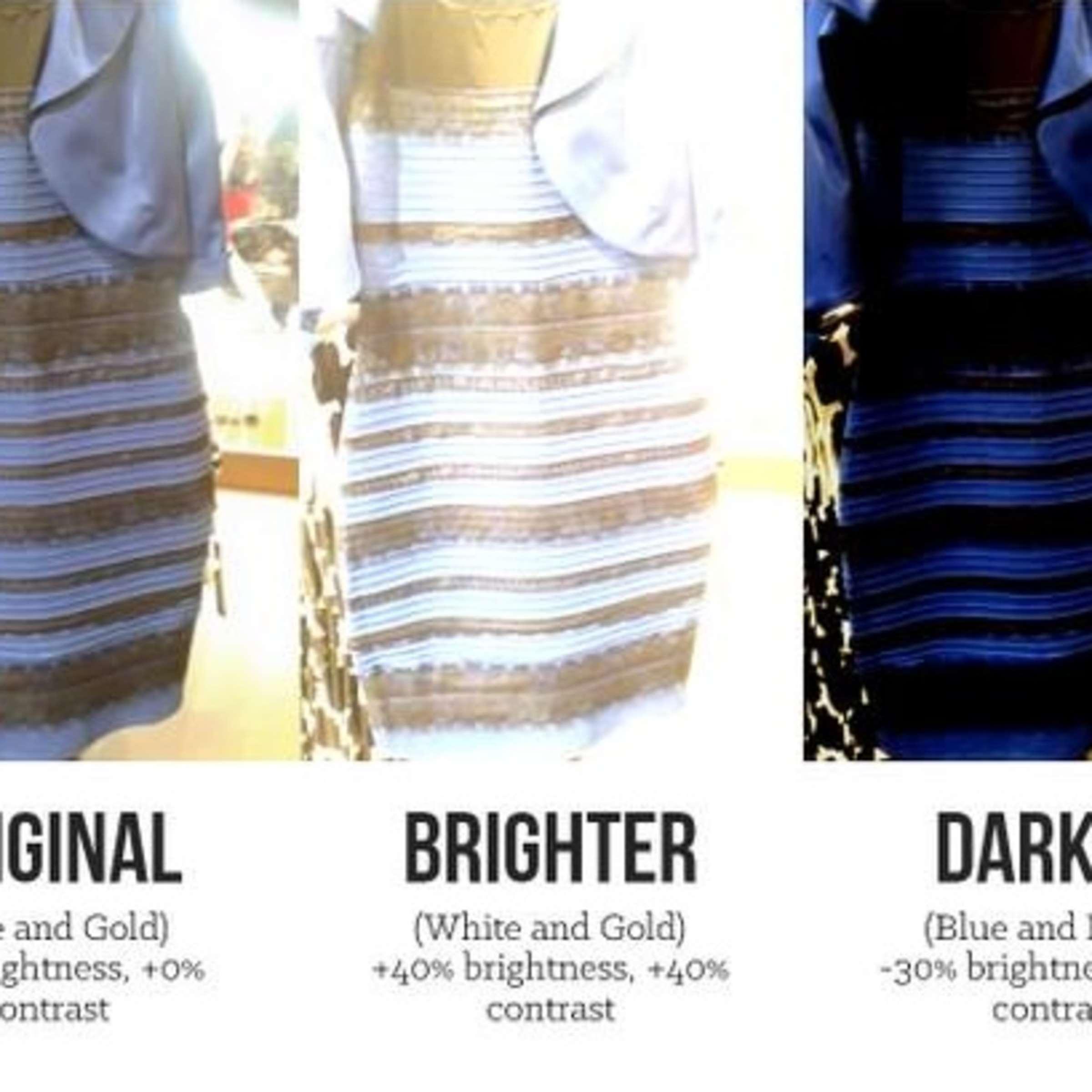 netzwelt: #dressgate - dieses kleid spaltet die welt | netzwelt