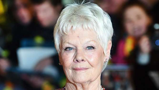 "Judi Dench bei der Premiere von ""Best Exotic Marigold Hotel 2"" in London. Foto: Andy Rain"