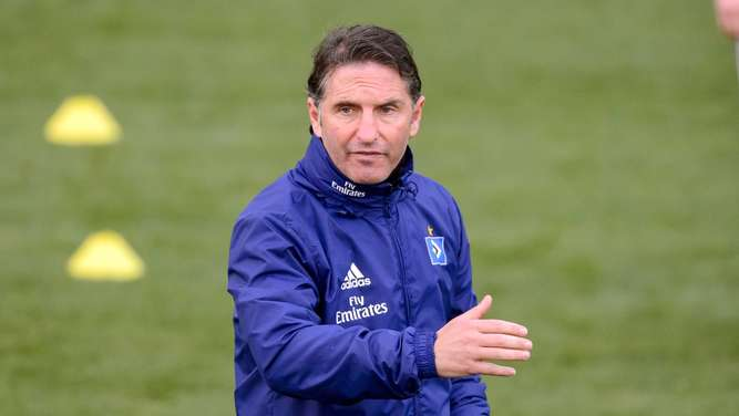 Bruno Labbadia, Hamburger SV, Trainer, Training