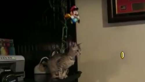 Internet-Fail-Videos: Super Bad Mario