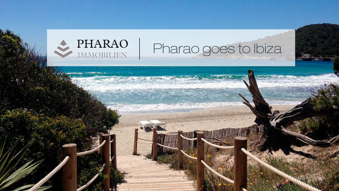 Pharao Immobilien, Ibiza