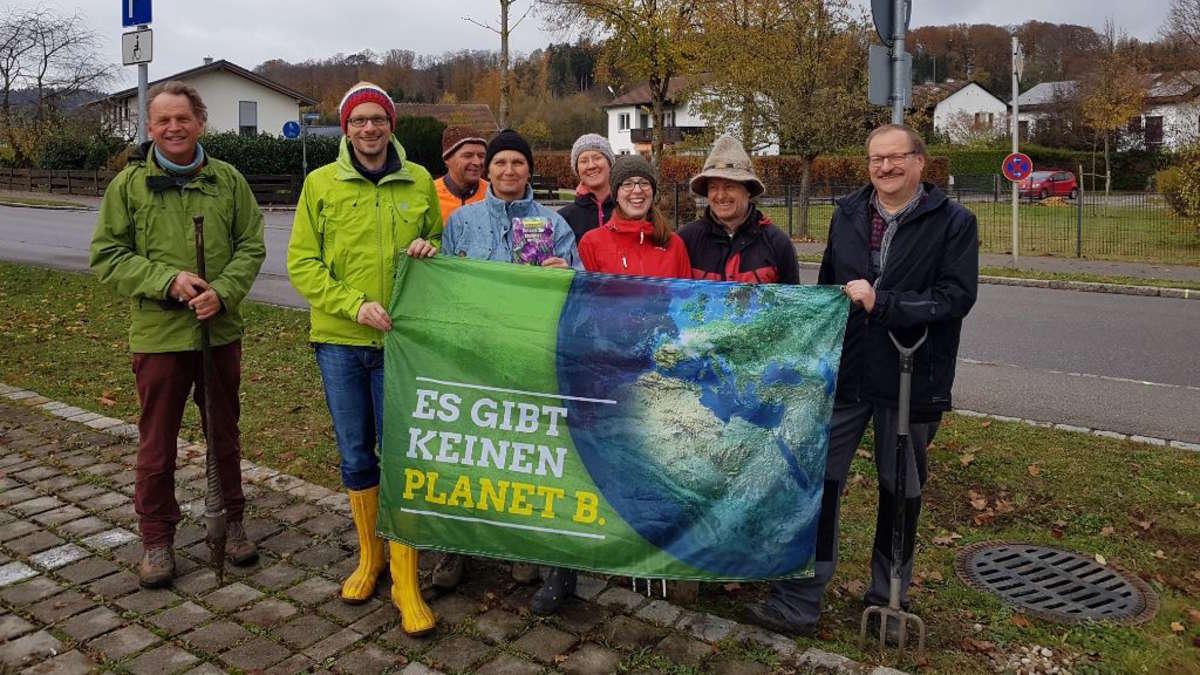 Feldkirchen-Westerham: Grüne pflanzen Blumen | Feldkirchen-Westerham - rosenheim24.de